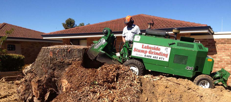 using stump grinding machine